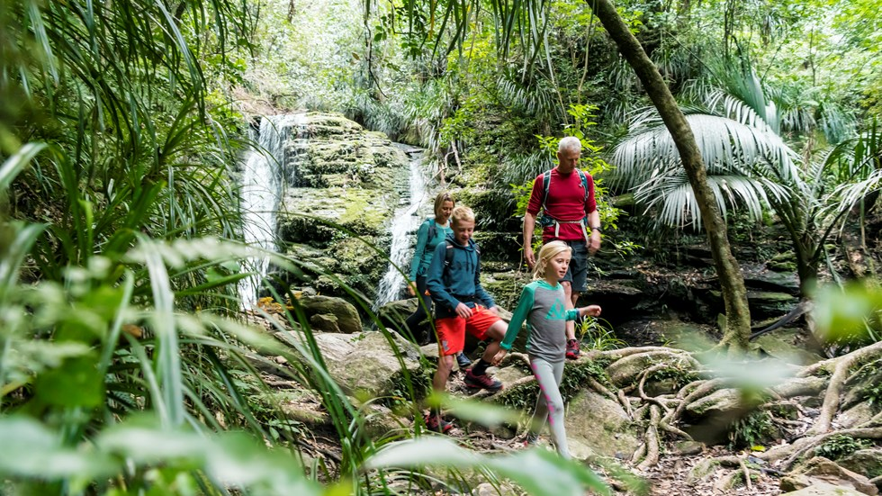 Family of four walking in front of a waterfall on the Queen Charlotte Track.