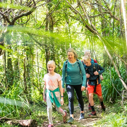 A family of four walk through native bush along the Queen Charlotte Track.