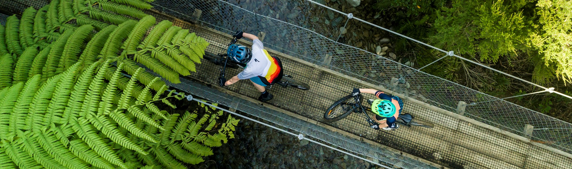 Aerial shot of two boys biking over a swingbridge on the Queen Charlotte Track.