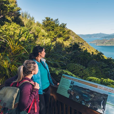 Two women walkers stand at a lookout on the Queen Charlotte Track looking over Resolution Bay.